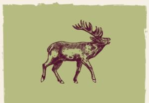 Grünes Bild mit Hirschicon